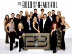 The Bold and the Beautiful TV Series