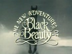 The New Adventures of Black Beauty (UK) TV Series