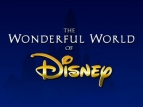 The Wonderful World of Disney TV Series