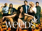 Weeds tv show photo