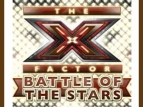 X Factor: Battle Of The Stars (UK) tv show photo