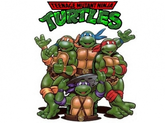Teenage Mutant Ninja Turtles III movies