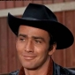 The Virginianplayed by James Drury