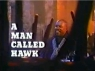 A Man Called Hawk TV Show