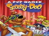 A Pup Named Scooby-Doo TV Show