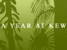 A Year at Kew (UK) TV Show