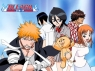 Bleach (JP) tv show