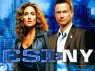 CSI: New York TV Show