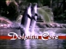 Dolphin Cove TV Show