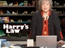 Harry's Law TV Show