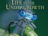 Life in the Undergrowth (UK) TV Show