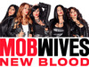 Mob Wives TV Show