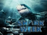 Shark Week TV Show