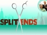 Split Ends TV Show