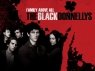 Black Donnellys, The tv show