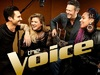 The Voice (US) TV Show