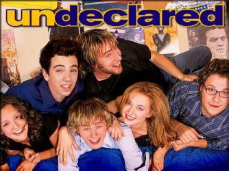 Undeclared tv show photo